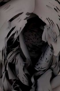 Charlotte McGowan-Griffin, The origin of the world (detail), layered cut paper
